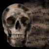 Ghostweb